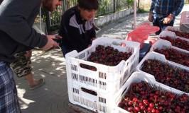 フランス男とブルガリア風景~買い物、買い食いetc