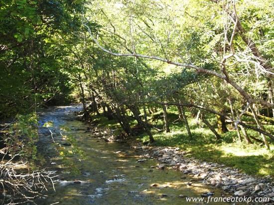 北海道 十勝 自然