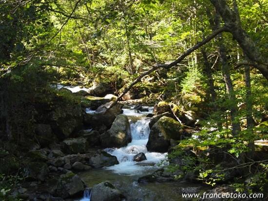 北海道 十勝 自然 豊似湖