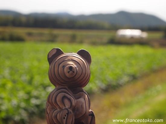 北海道 自然 風景 北海道のおみやげ 熊ぼっこ アイヌコタン