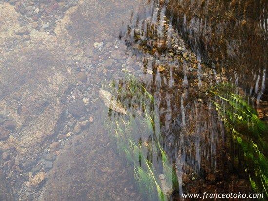 北海道 清里町 神の子池