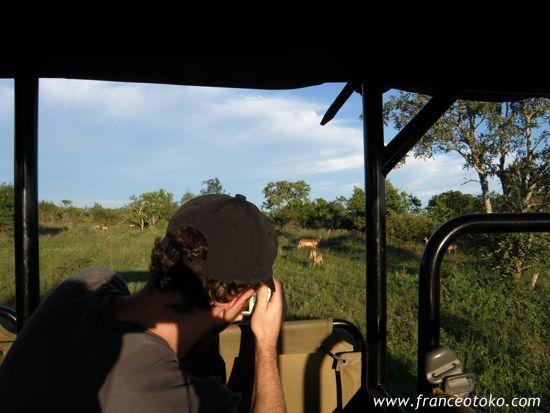 南アフリカ ポールクルーガー国立公園