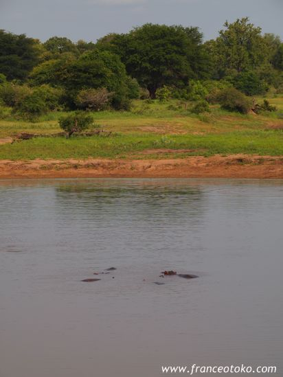 南アフリカでサファリ