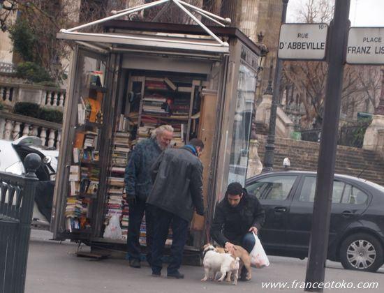 フランス犬