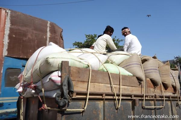 インド ラジャスタン州 ランタンボール