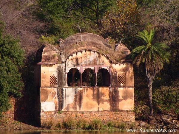 インド ランタンボール国立公園