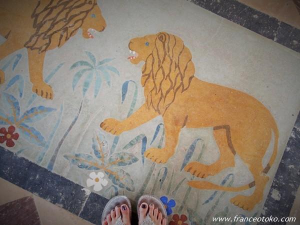 インド ライオン