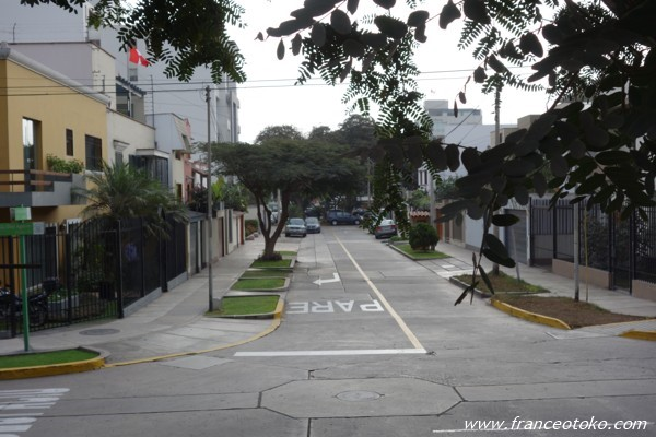 ペルー 道路