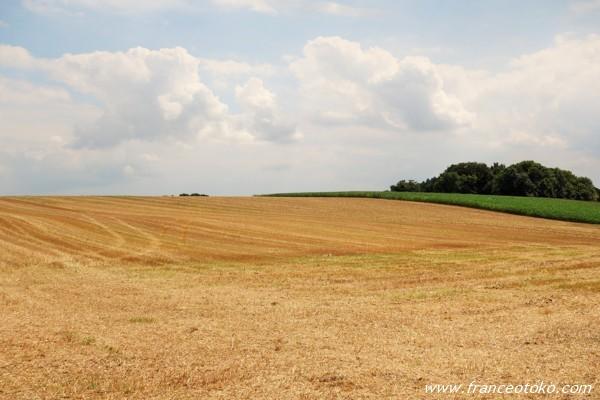 フランス 田園
