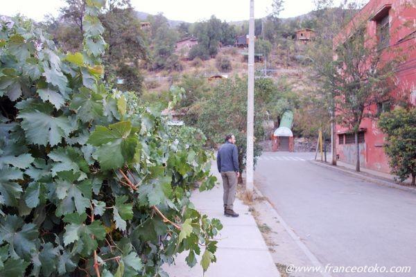 チリ サナトリウムの町