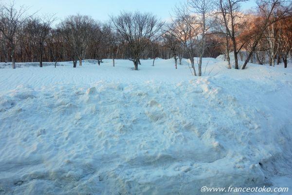 ニセコ 雪