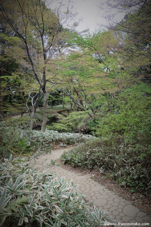 六義園 住所 東京都文京区本駒込6-16-3