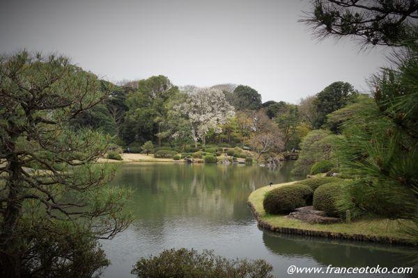 日本 庭園