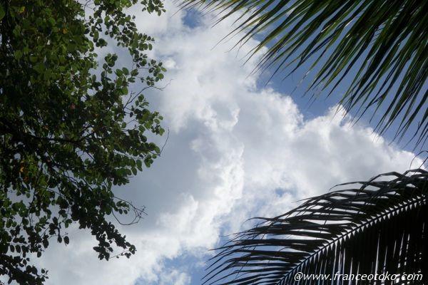 ブラジル 空