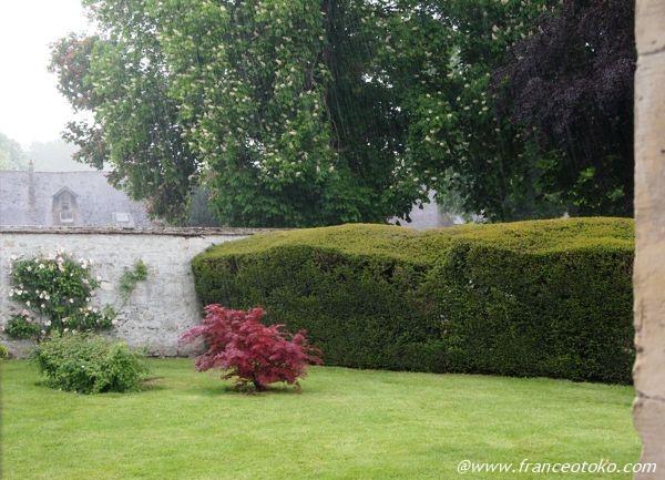 フランスの庭