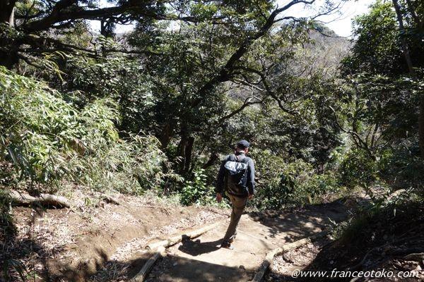 鎌倉 ハイキング 天園