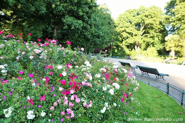 フランス 花がきれいな公園