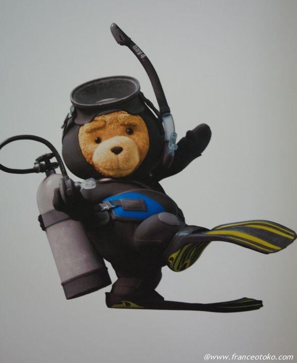 テッド ダイビング