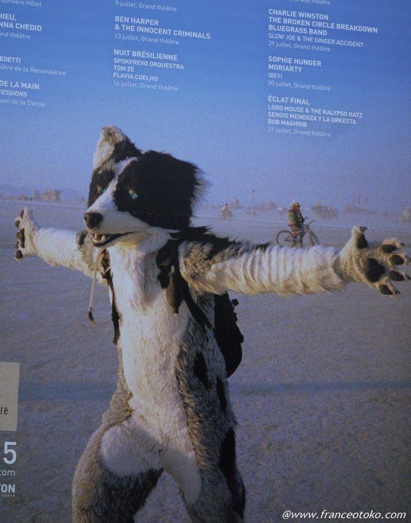 宇宙的な犬