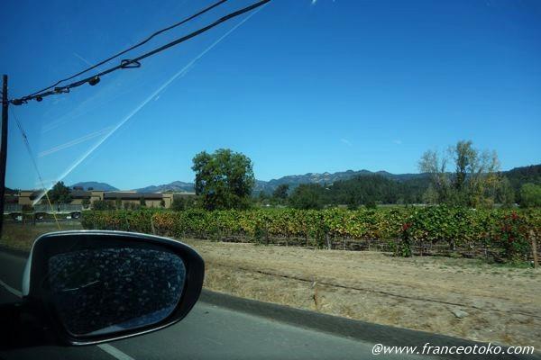 ナパバレー カリフォルニア