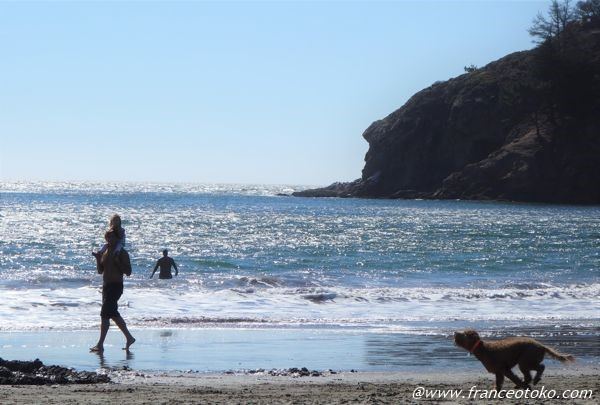 Muir Beach サンフランからビーチ