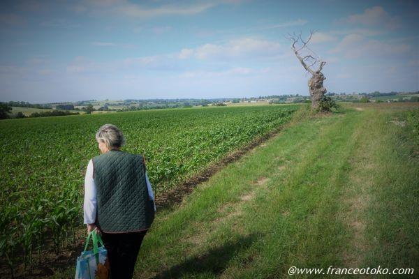 フランス 自然暮らし