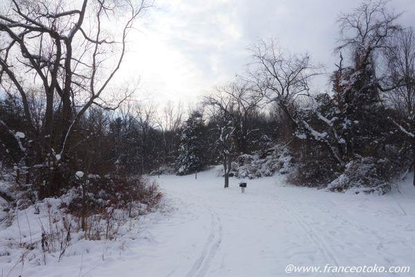 アメリカ 雪景色