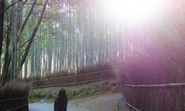嵐山散策☆亀山公園&竹林の小径で神秘なトワイライトゾーン体験