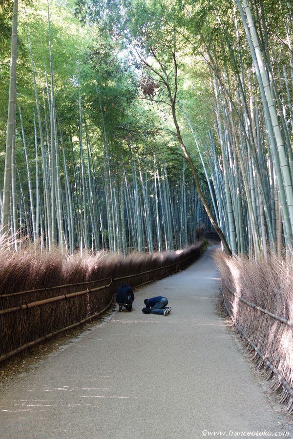 竹林の小径 嵐山