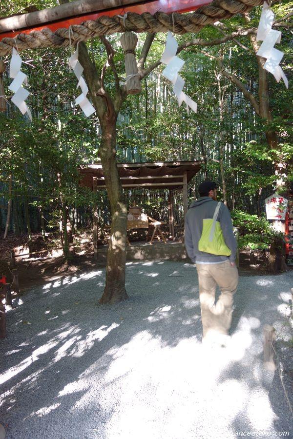 嵐山 神社