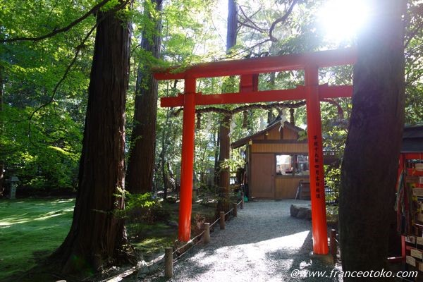 嵐山 神社 縁結び