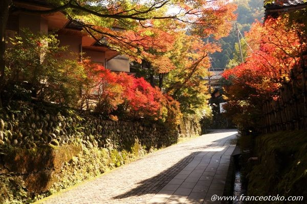 山中温泉 紅葉