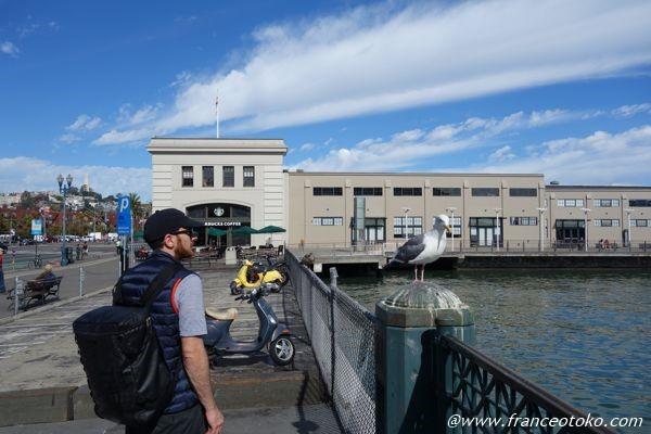 サンフランシスコ 観光 港