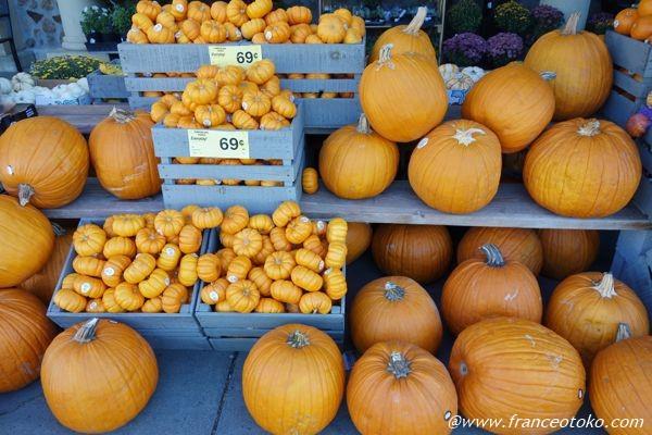 アメリカ かぼちゃ
