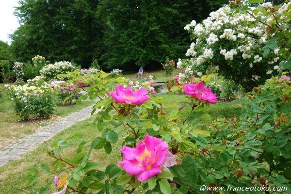L'Haÿ-les-Roses パリ観光