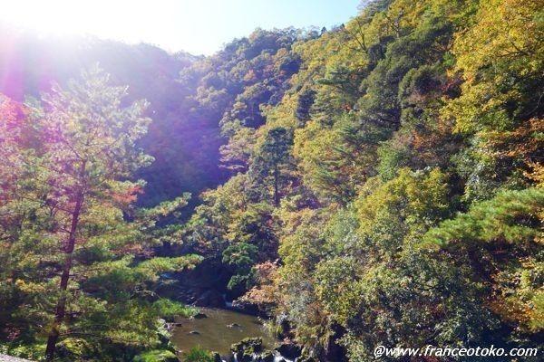 DSC00711blogblogblog