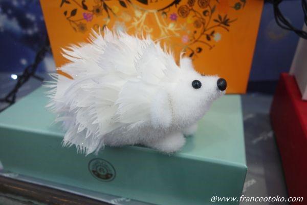 白いハリネズミ