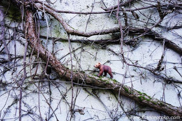シュライヒ クマ