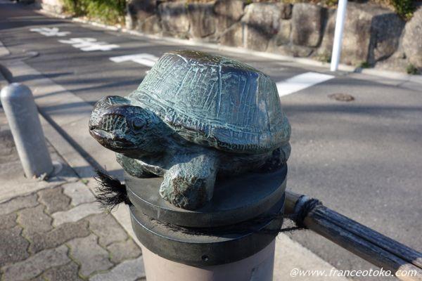 西郷山 亀
