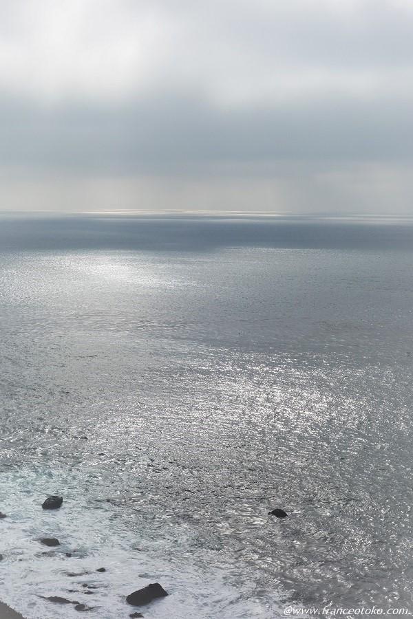 ロサンゼルス クジラ