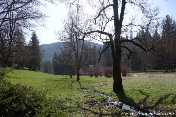 ルーマニア 自然