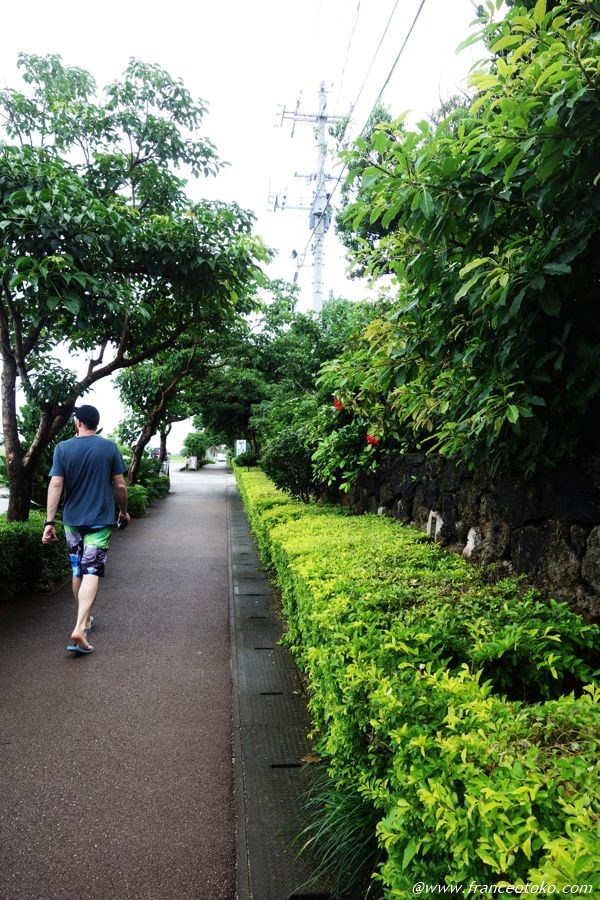 石垣島 おすすめシーズン