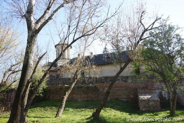 ドラキュラ 城