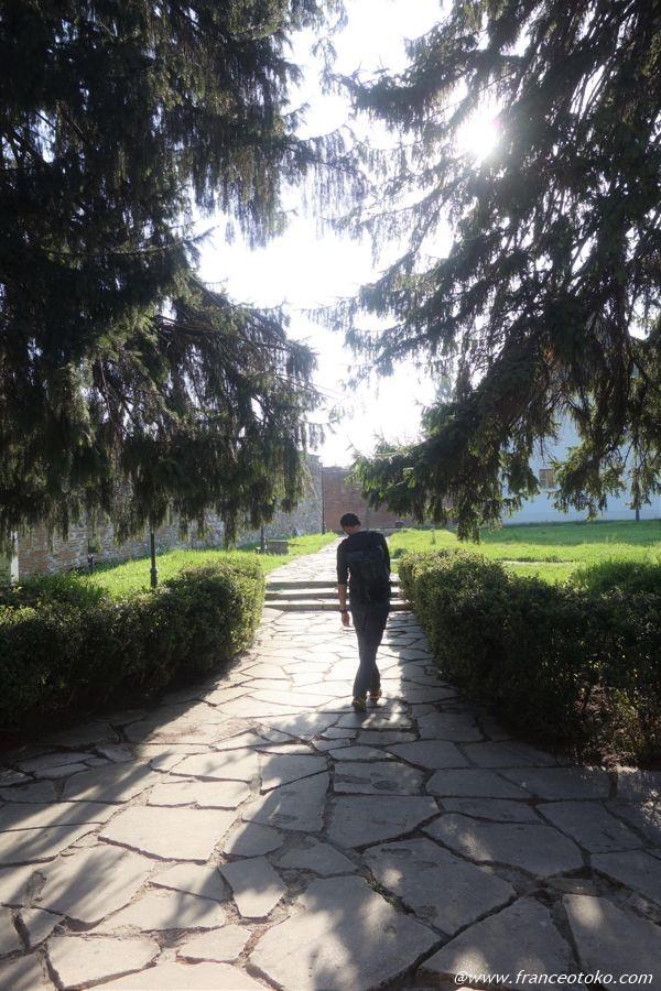 ルーマニア ドラキュラ 旅
