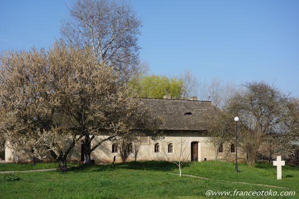 トゥルゴヴィシュテ ルーマニア