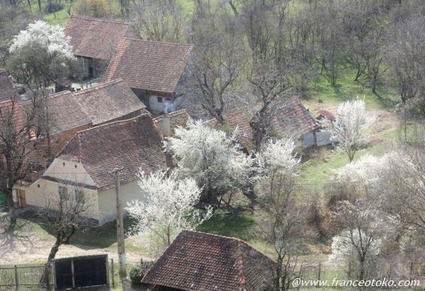 ヴィスクリ要塞教会