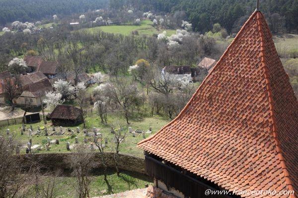 ヴィズクリ ルーマニア 世界遺産