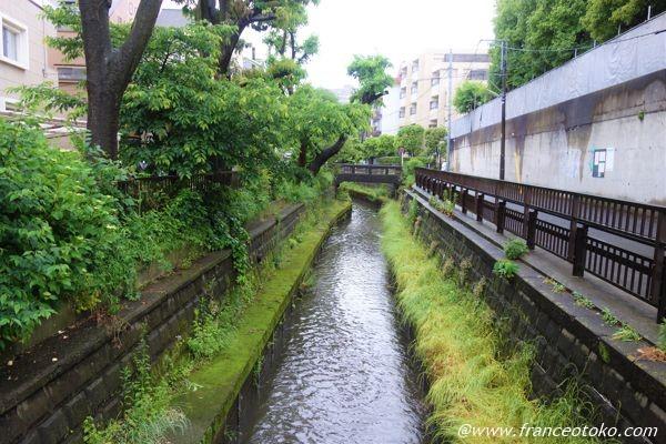 東京 5月