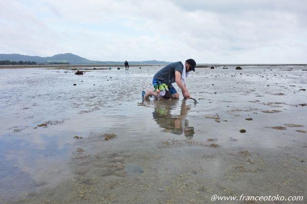 潮干狩り 石垣島 楽しい