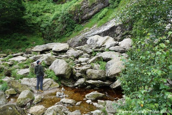 パワーズコート 滝 アイルランド